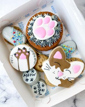 giftbox tematicos gatito